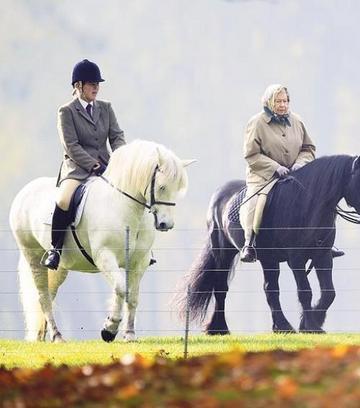visszér lovaglás