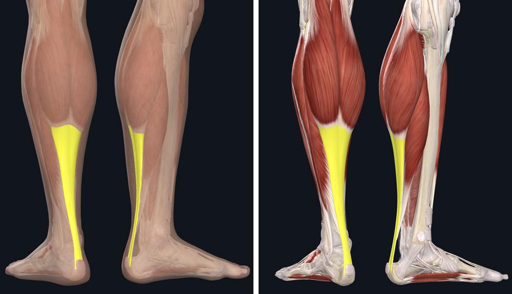fotó a láb visszérműtétéről