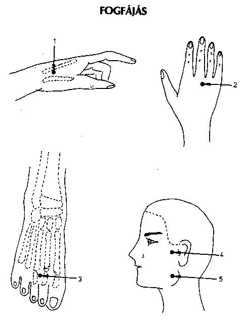 50+ Best reflexzónák, akupunktúrás pontok images | reflexológia, akupresszúra, csakrák